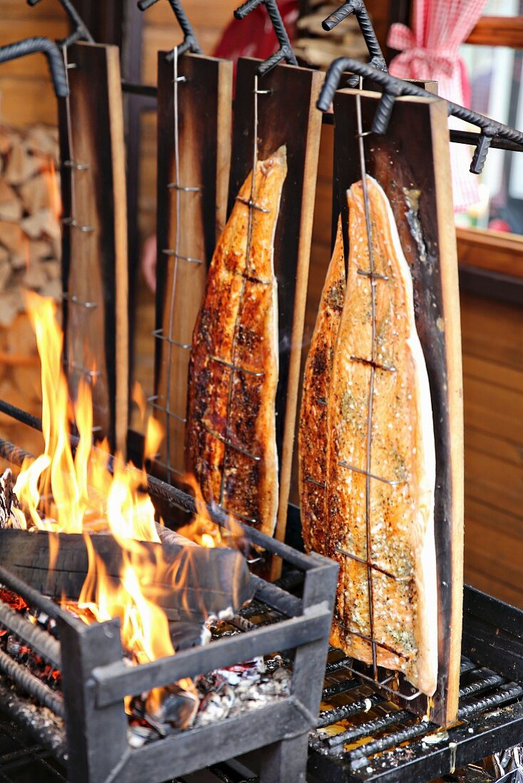 Salmon being grilled over an open fire