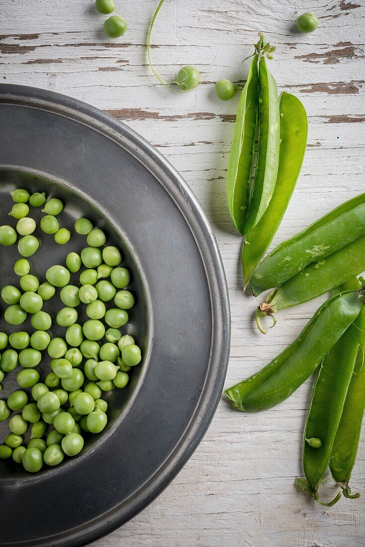 Shelled peas on a metal plate with pea pods next to it