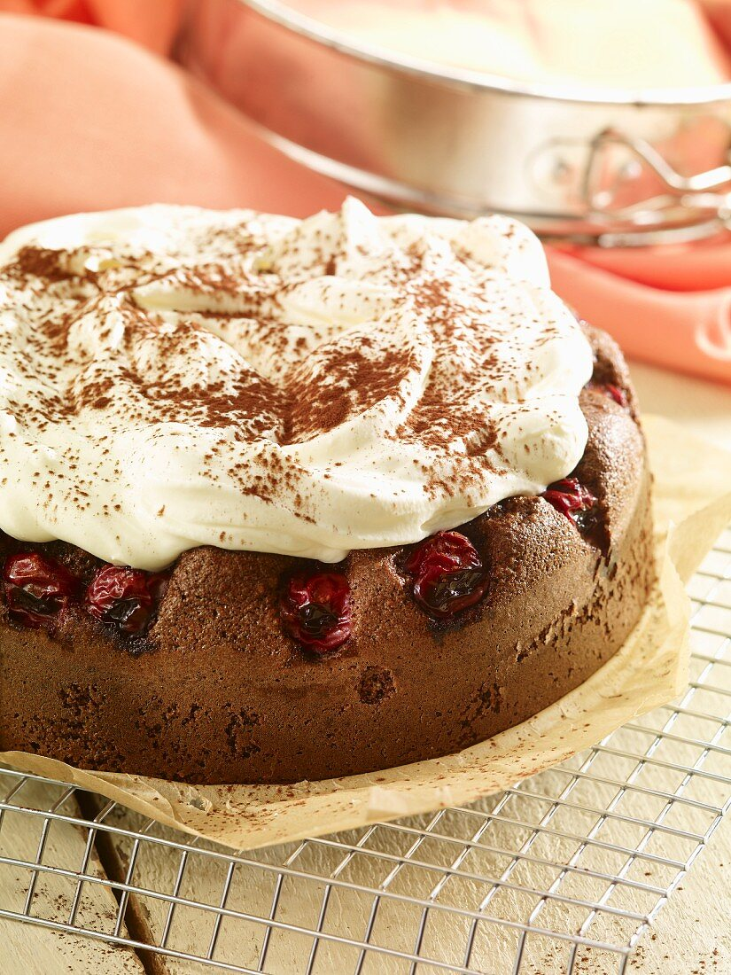 Chocolate cake with cherries and mascarpone cream