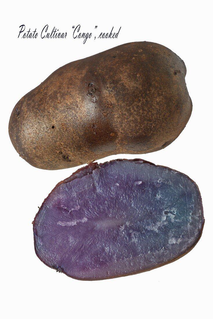 A Blue Congo potato (cooked)