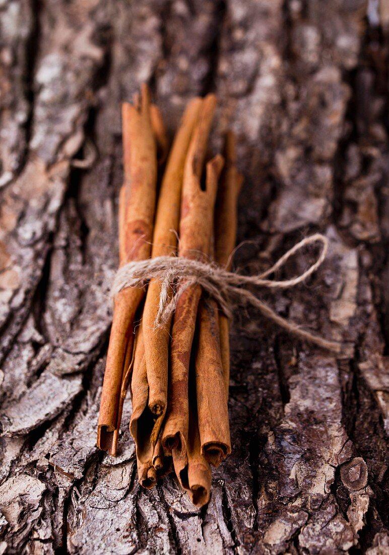 A bundle of cinnamon sticks on a piece of bark