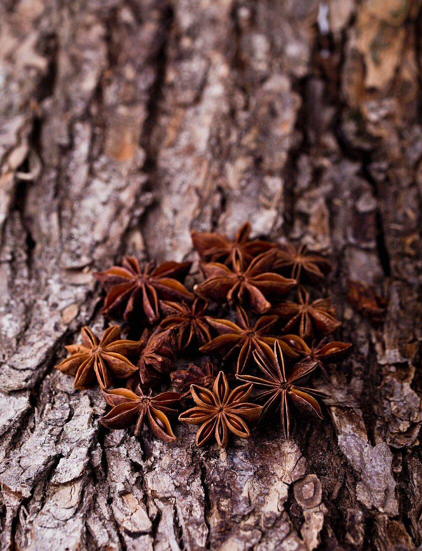 Star anise on a piece of bark