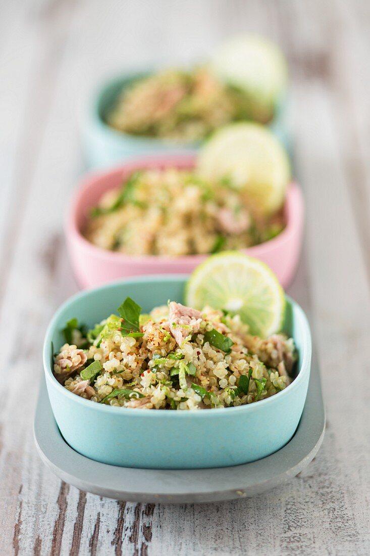 Quinoa tabbouleh with tuna fish