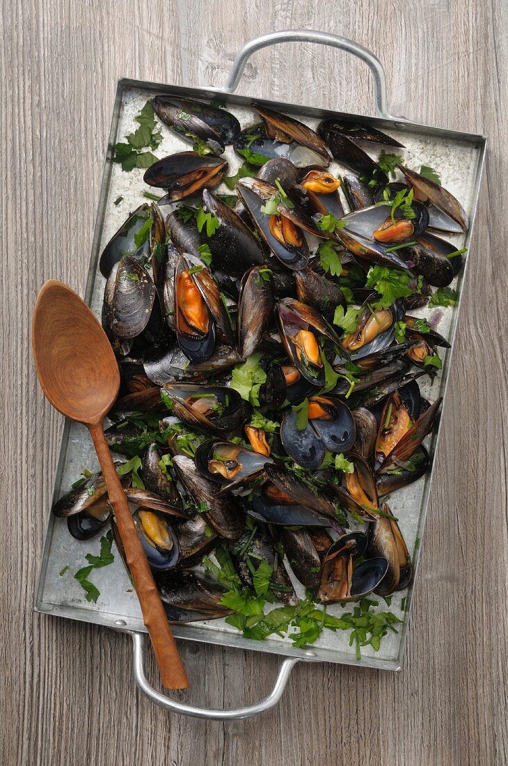 Mussels and parsley on a baking tray