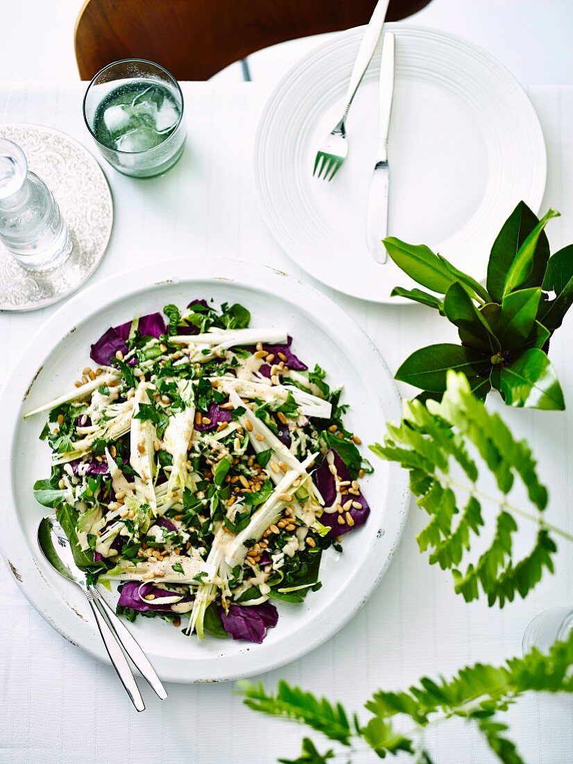 Radicchio, Spinach silverbeet & pine nut salad with ranch dressing