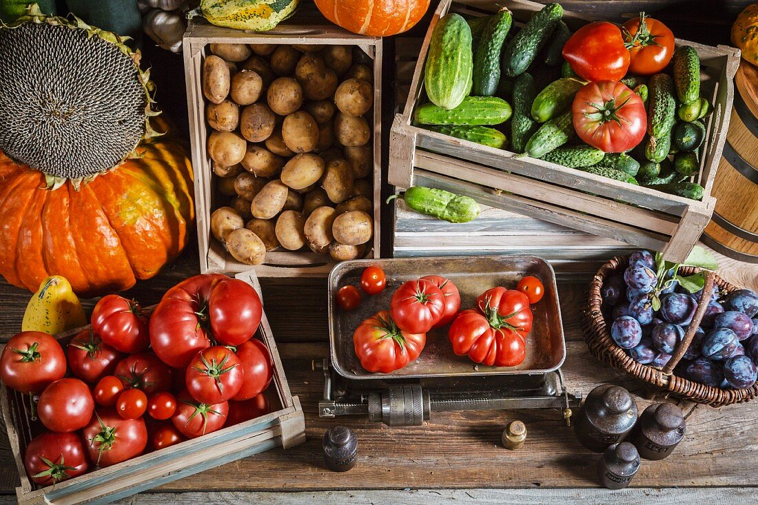 Crates of fresh fruit and vegetables