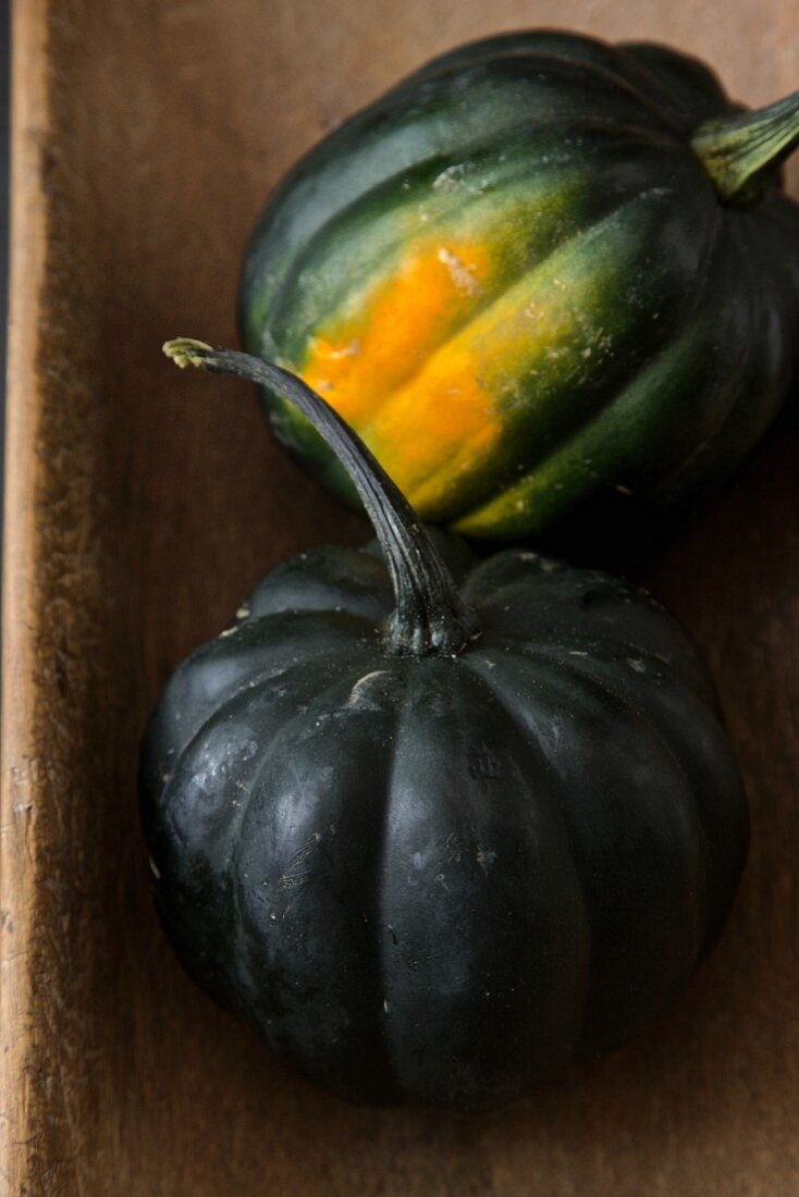 Two green buttercup squash