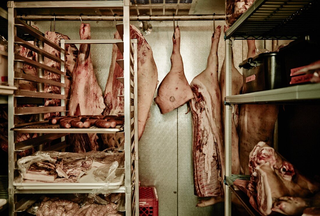 Pig carcasses hanging in cold room in a butcher's