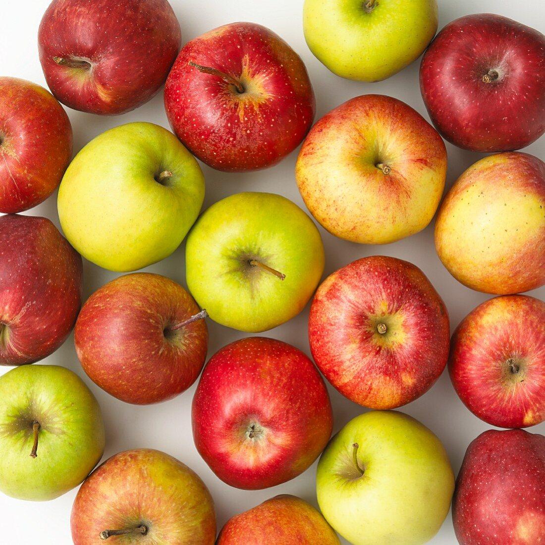 Various apples (full frame)