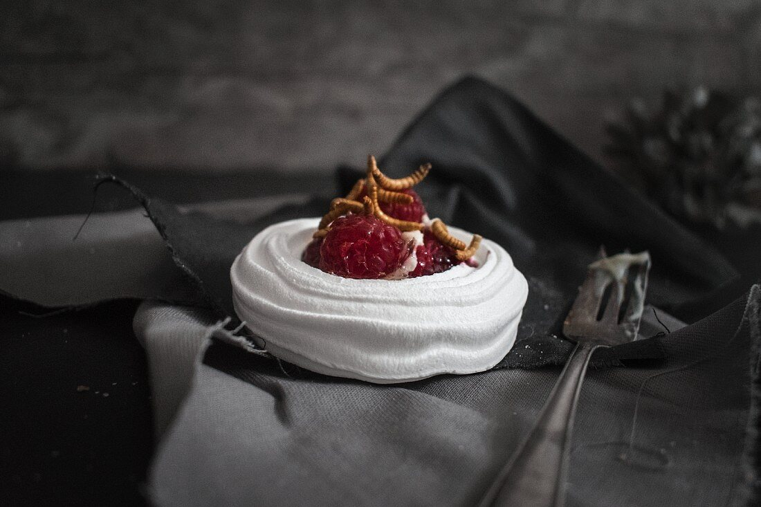 A raspberry meringue nest with sweet meal worms