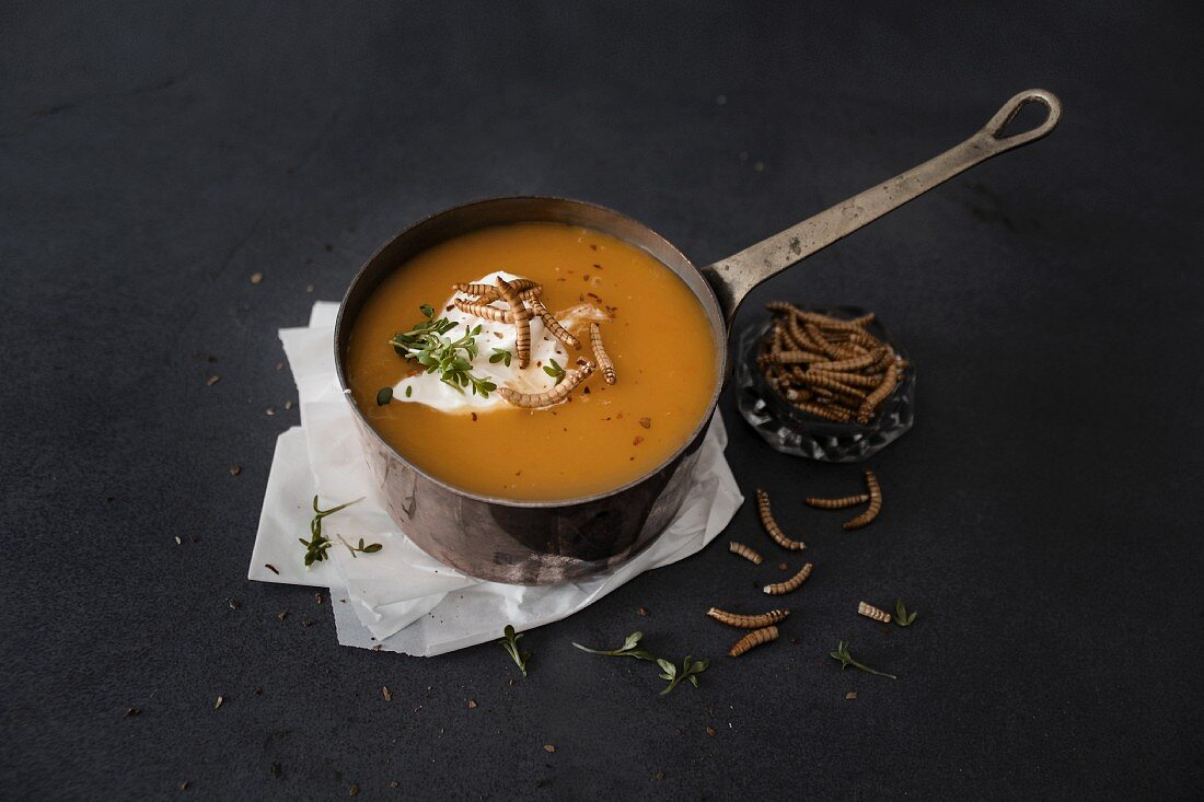 Pumpkin soup with cream cheese and crispy meal worms