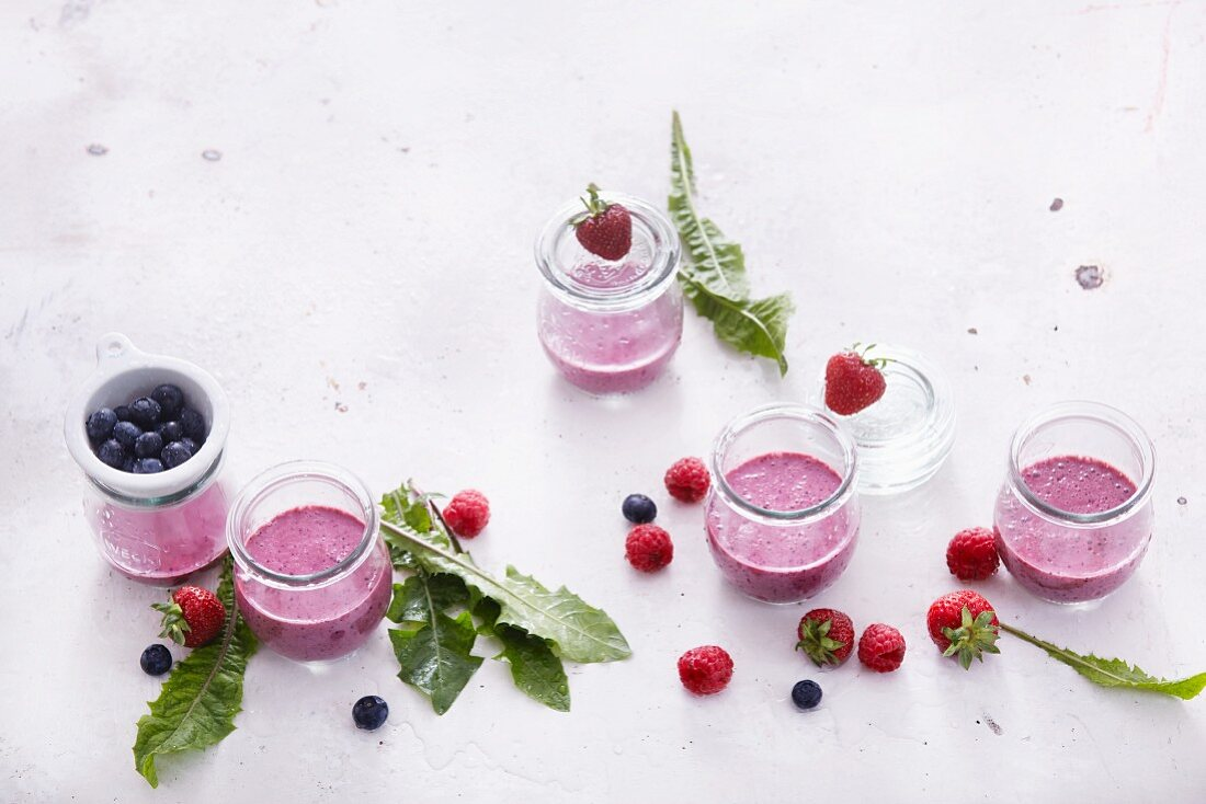 Berry smoothies with milk and dandelions