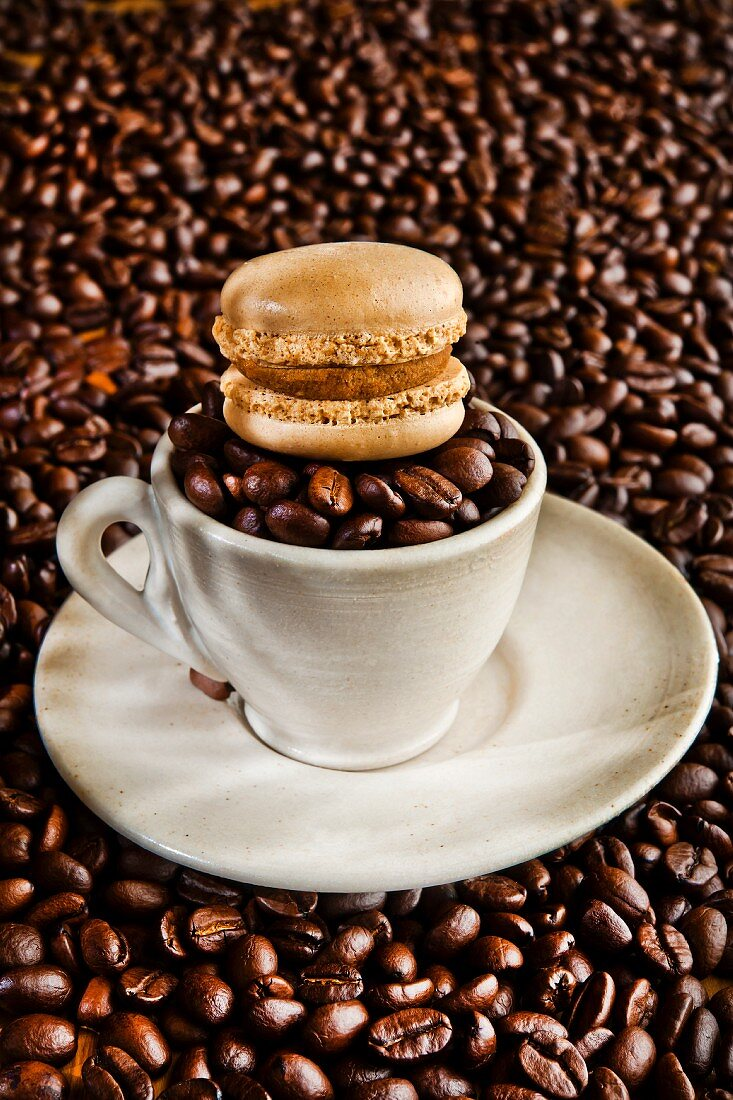 A mocha macaroon on top of a cup filled with coffee beans