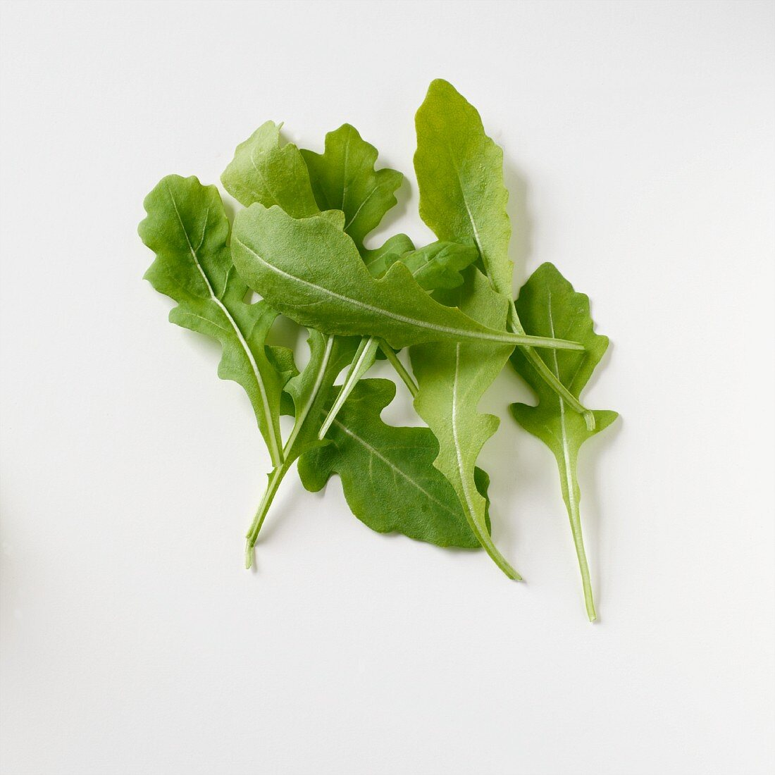 Rocket leaves seen from above