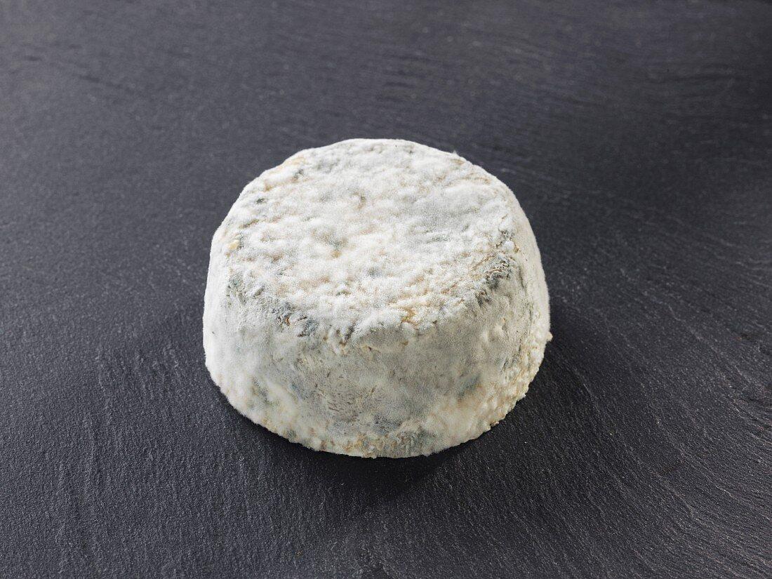 Le Lyonnais (French goat's cheese)