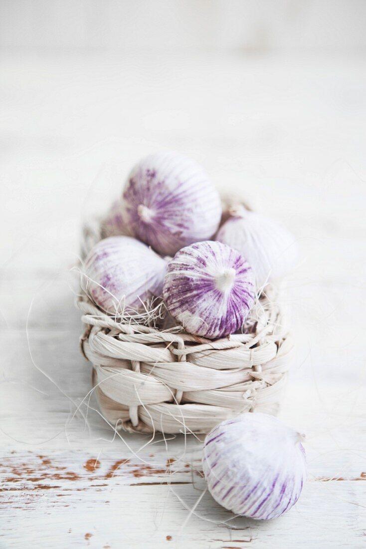 Field garlic in a basket