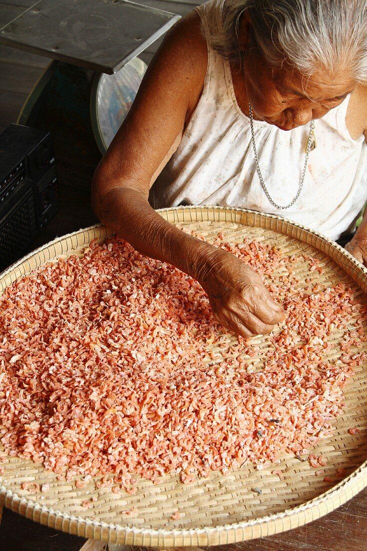 An older woman sorting dried prawns, Thailand