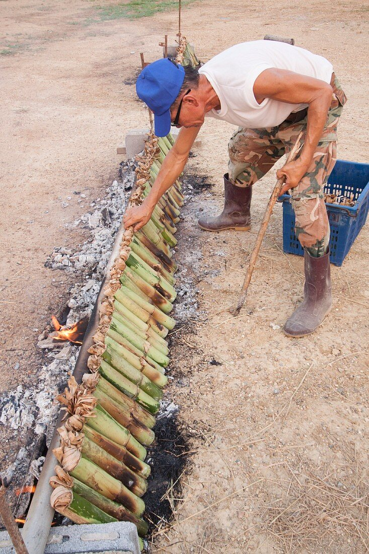 Parcels of rice in bamboo leaves being grilled, Thailand