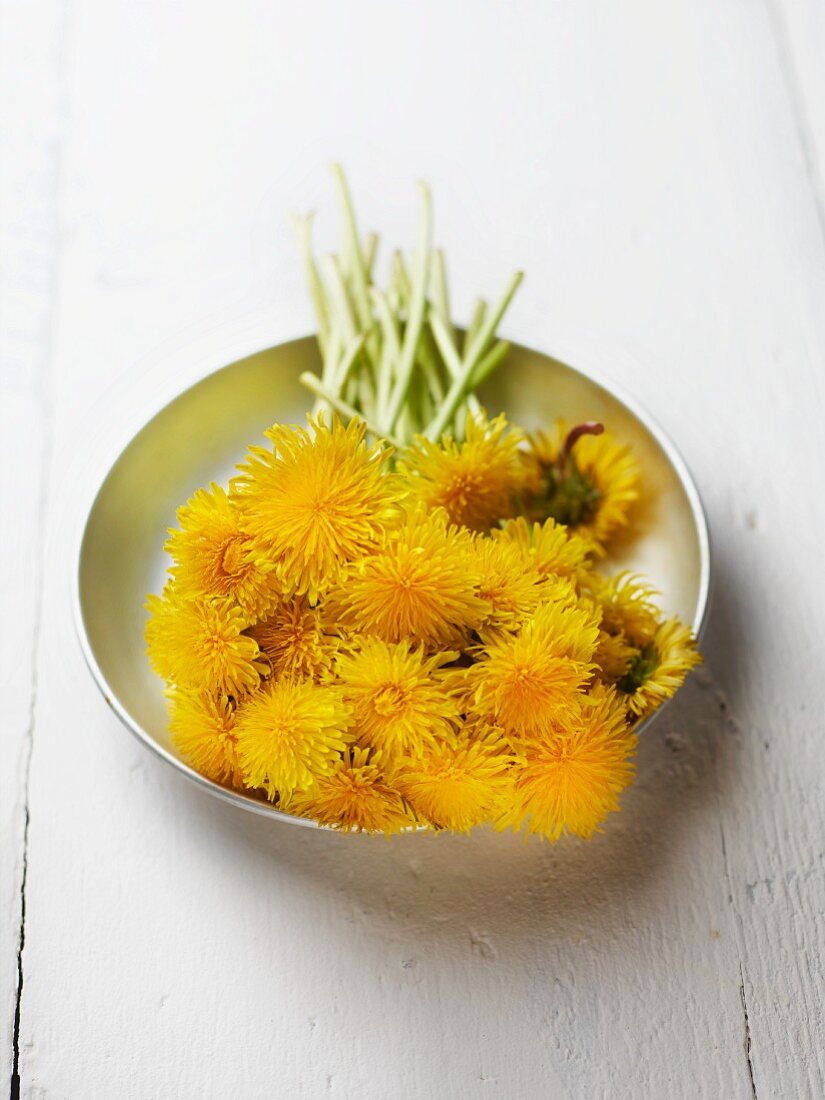 Dandelion flowers in metal dish