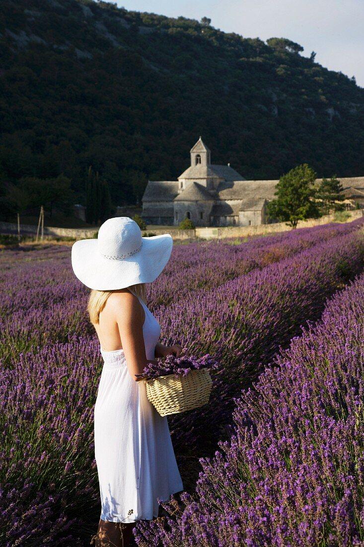 Weiss gekleidete Frau in einem Lavendelfeld mit Blick auf die Senanque Abtei; Gordes, Provence, Frankreich