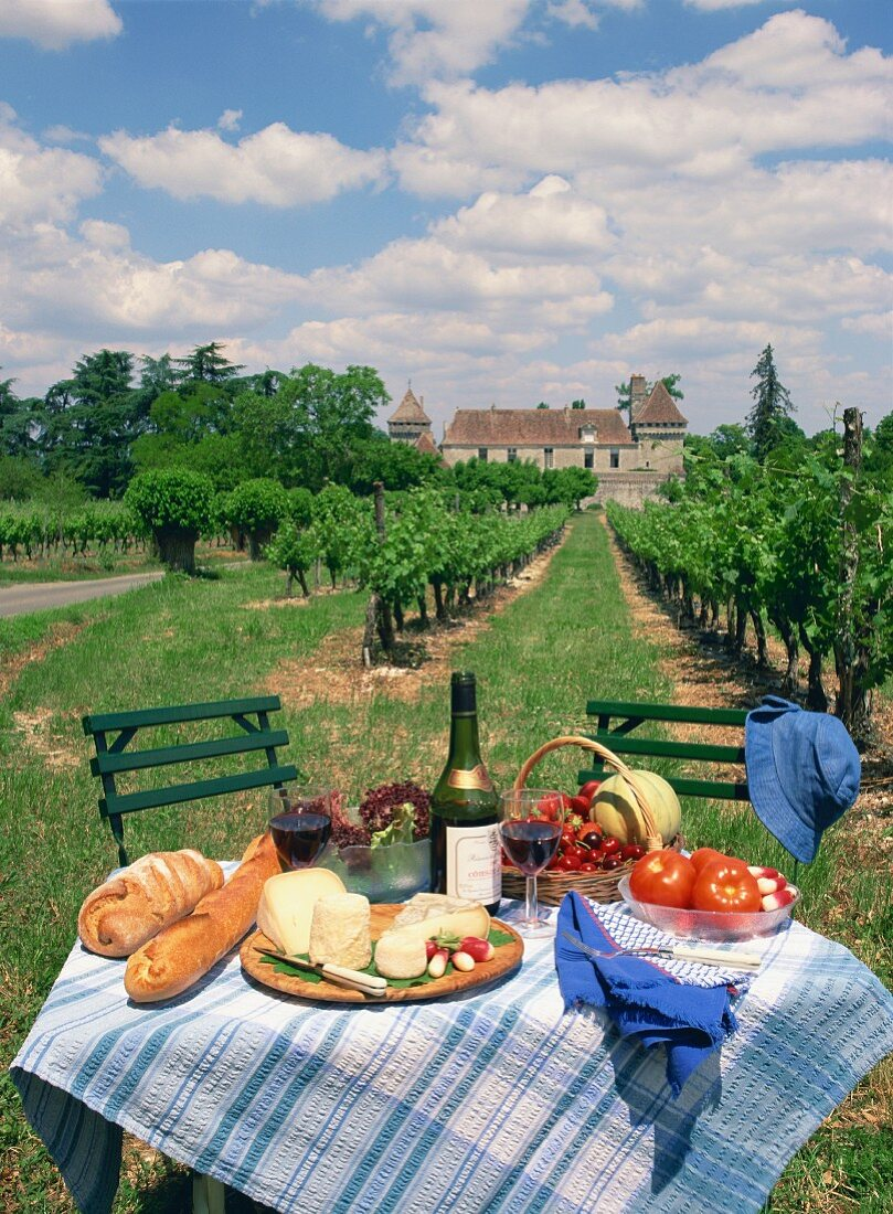 A picnic table in a vineyard in Aquitaine, France, Europe