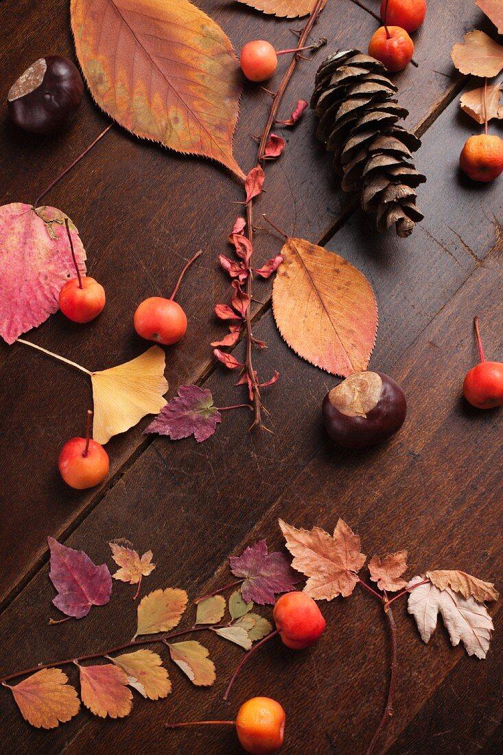 Herbststillleben mit Kiefernzapfen, Blättern und Beeren