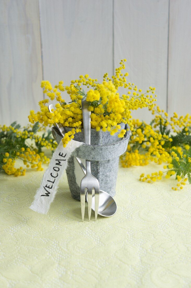 Felt pot of mimosa with motto and cutlery