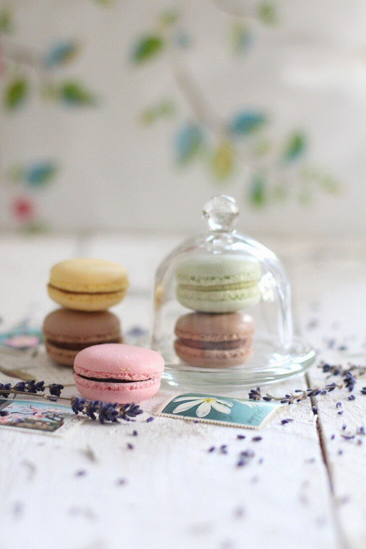 Various macaroons, some under a glass cloche