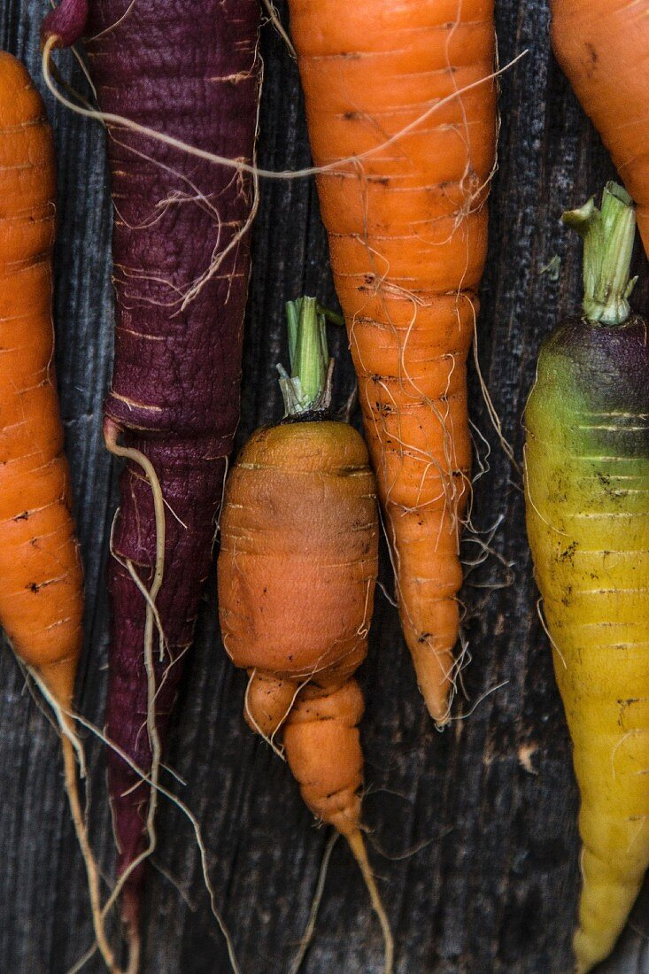 Various fresh carrots on a wooden surface
