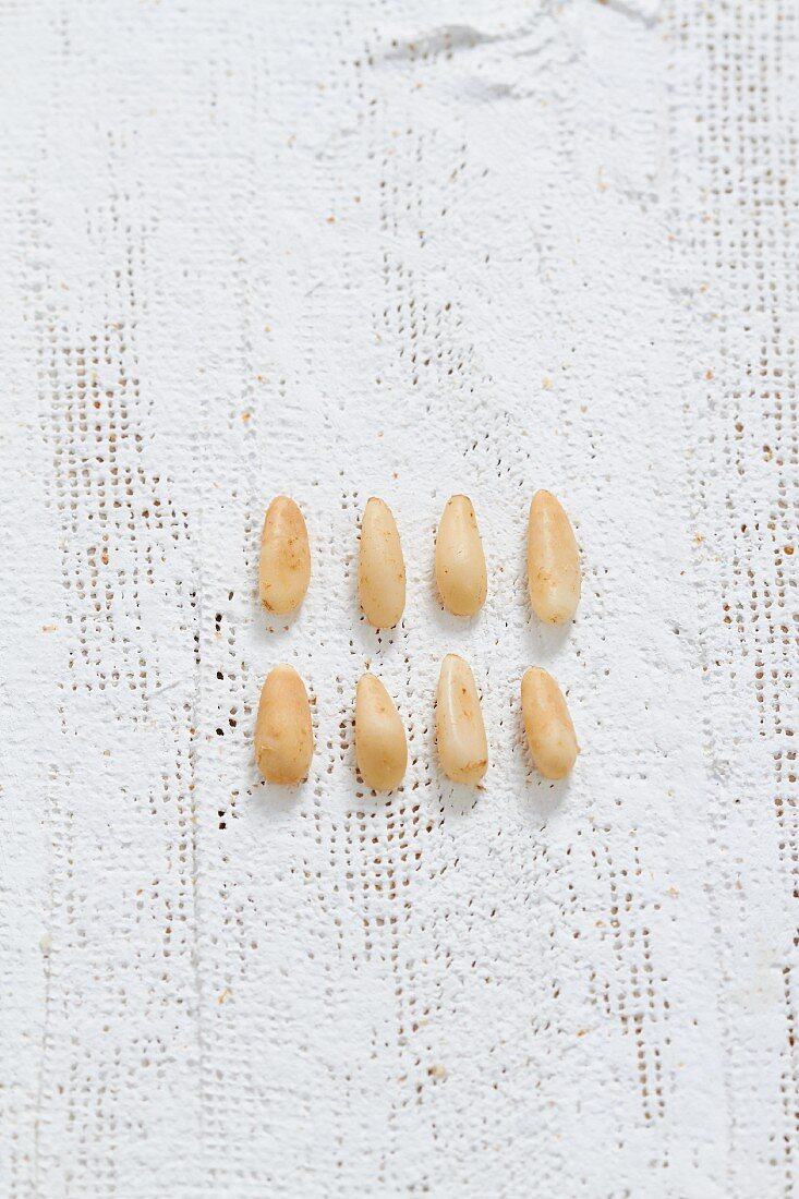 Two rows of pine nuts