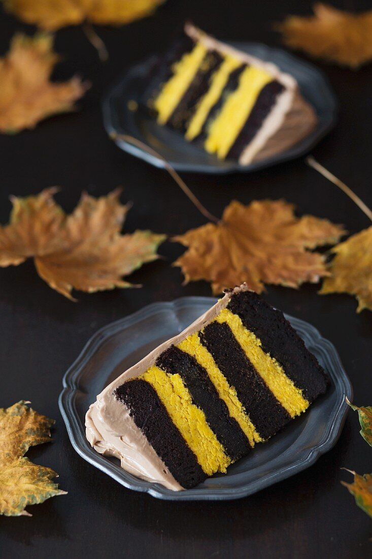 Two slices of chocolate and pumpkin layer cake on a dark surface with autumnal leaves