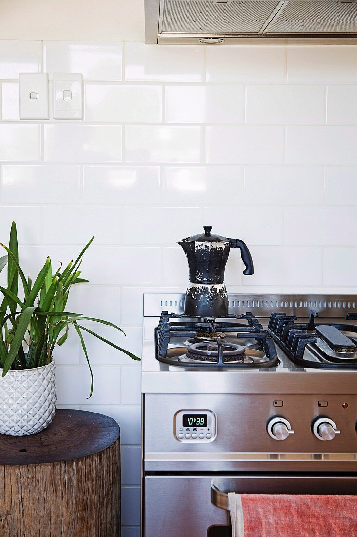 Espresso pot on stainless steel gas cooker and house plant on tree stump stool against white wall tiles