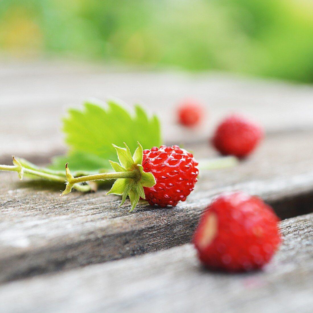 Wild strawberries on a garden table