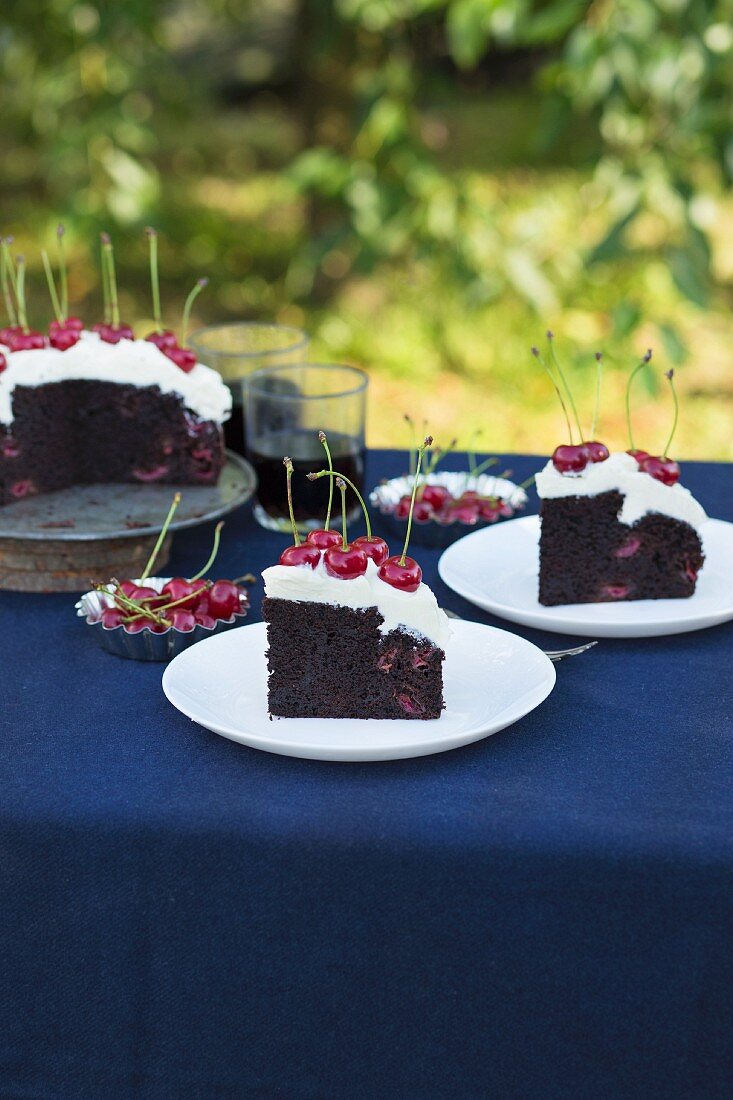 Chocolate cake with cream cheese frosting and fresh cherries on a garden table