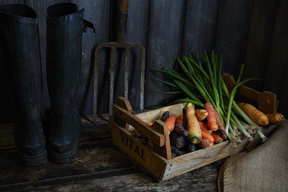 Carrots and leek in a vegetable crate