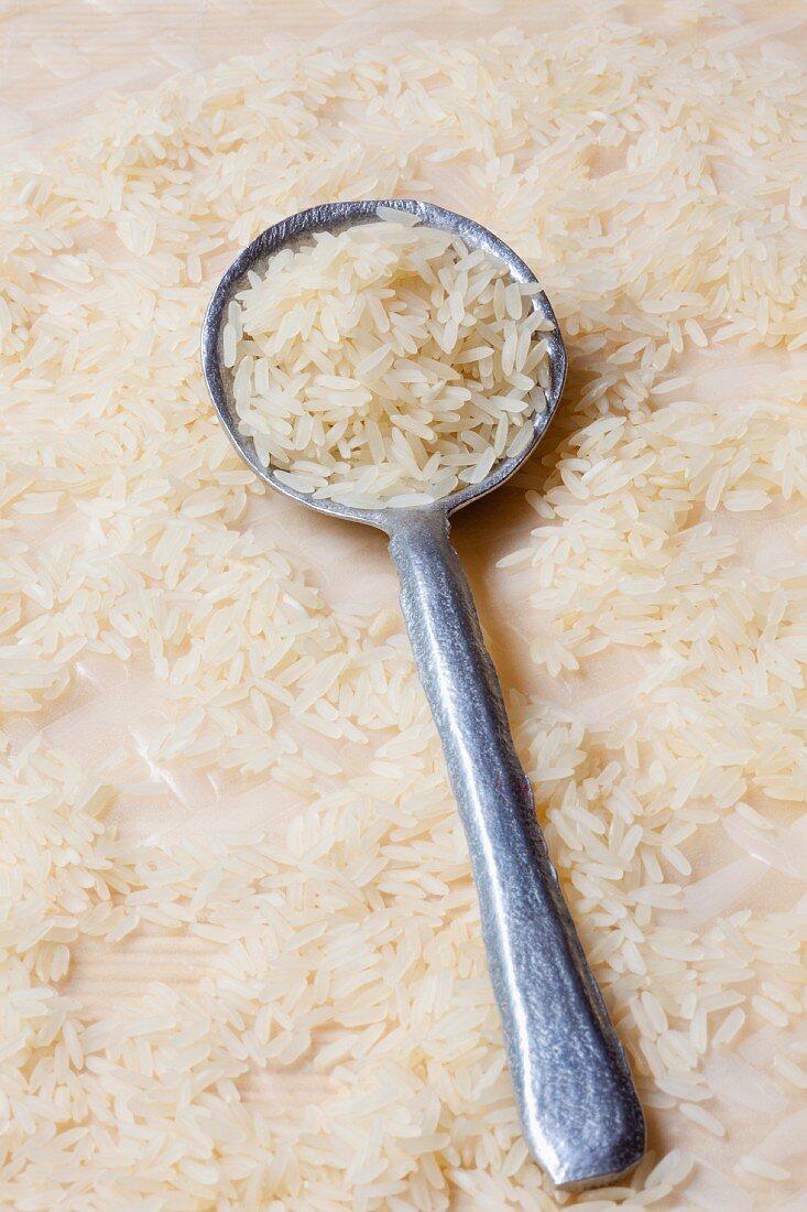 Basmati rice on a spoon