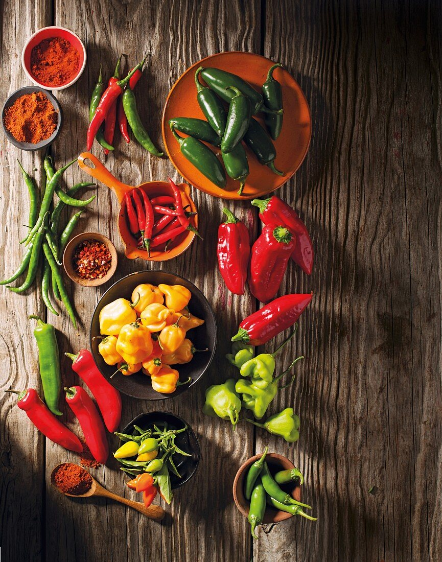 An arrangement of various chilli peppers and chilli powder