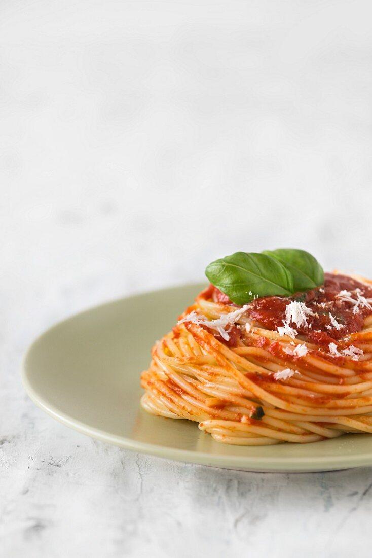 Spaghetti mit Tomatensauce, frischem Basilikum und Parmesan