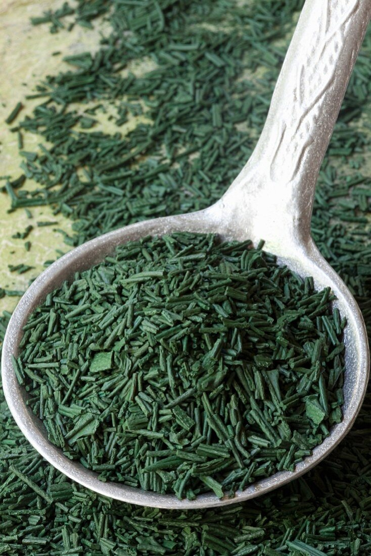 Spirulina on a spoon (close up)