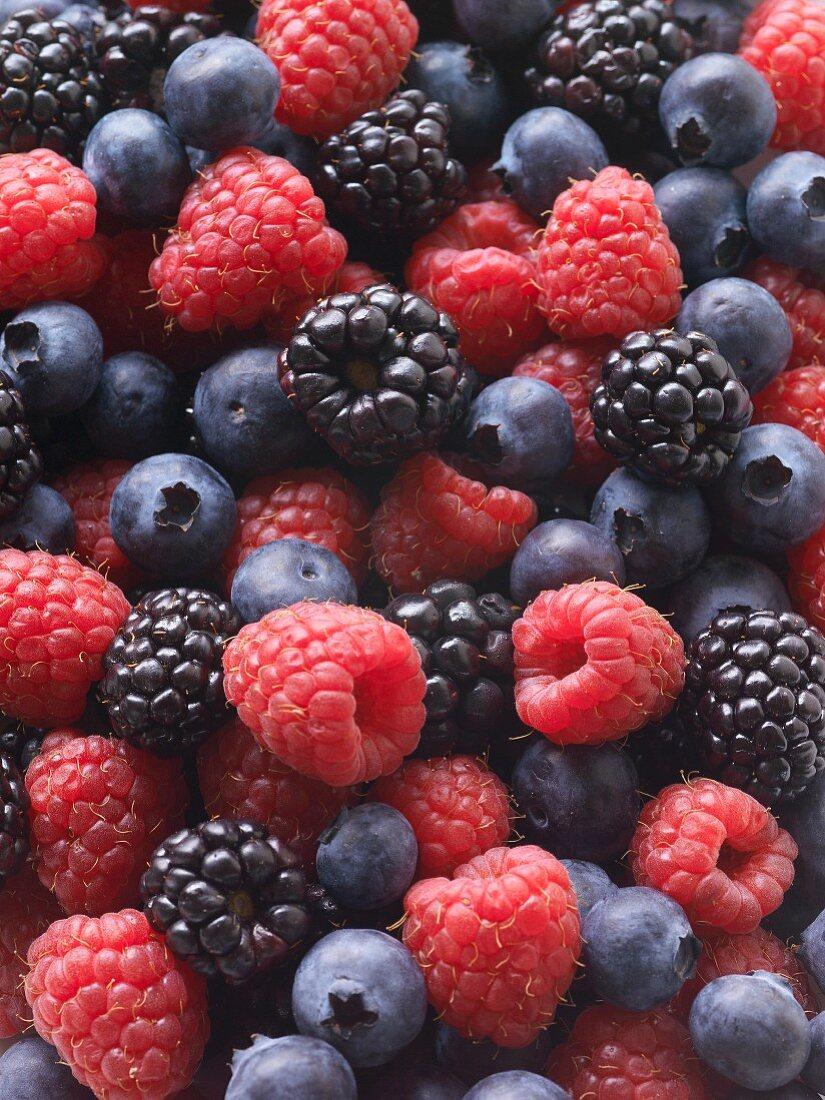 Various fresh berries (full frame)