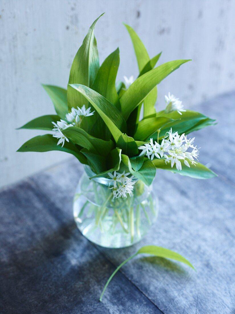 A bunch of wild garlic in a glass vase
