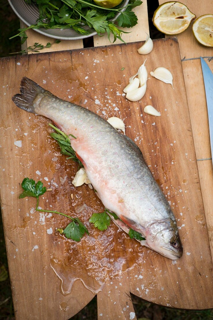 Char being prepared for grilling: fish being filled with herbs and garlic