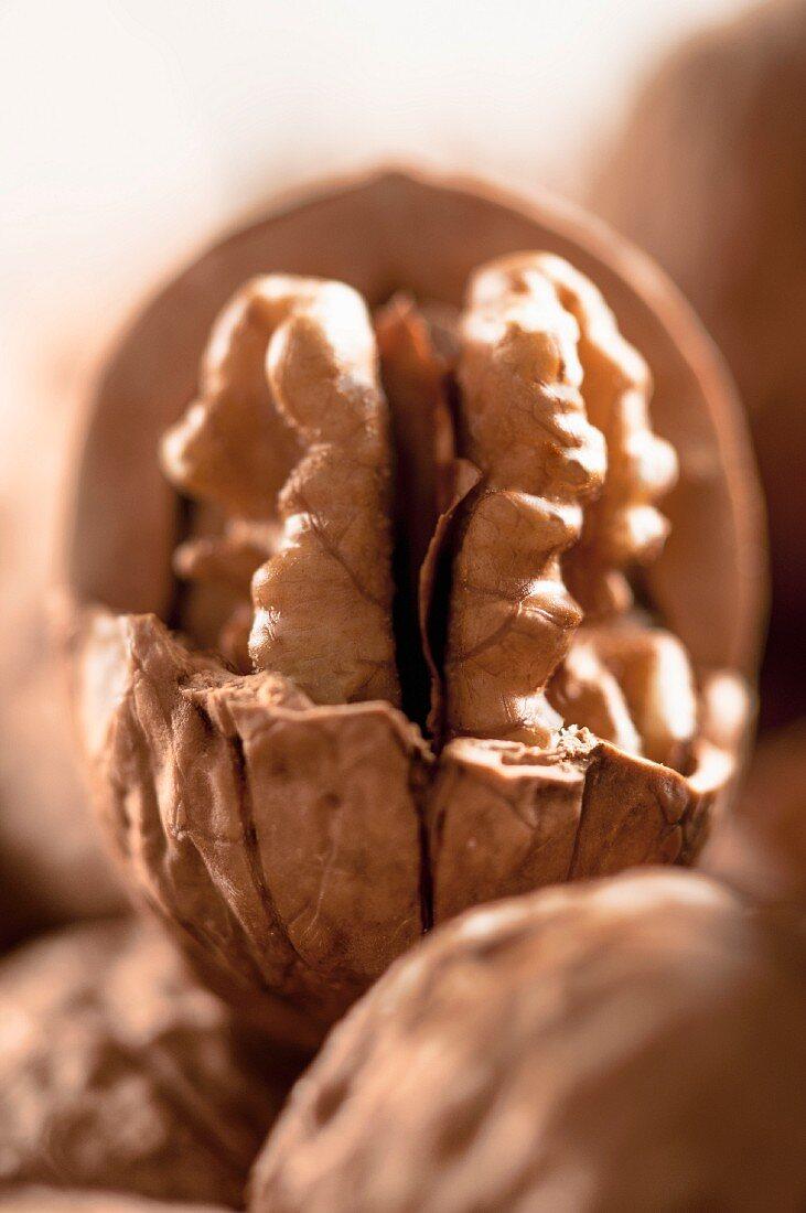 A broken walnut