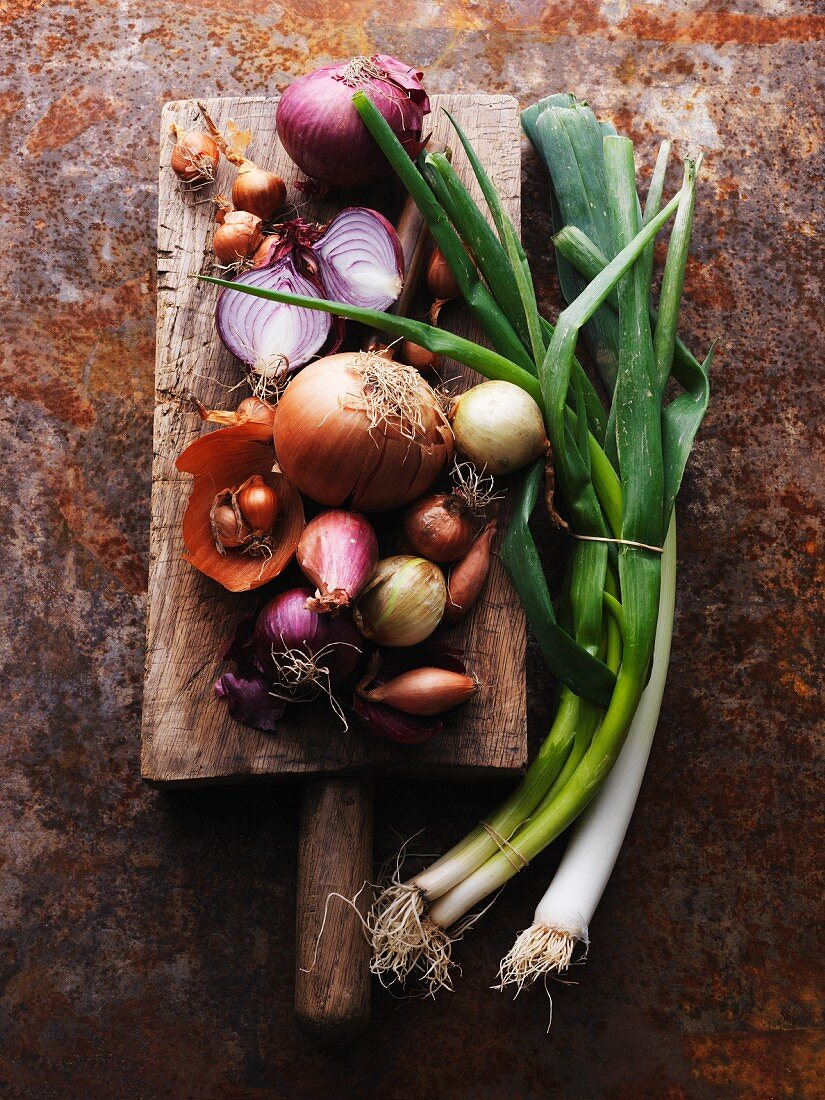 An arrangement of various onions
