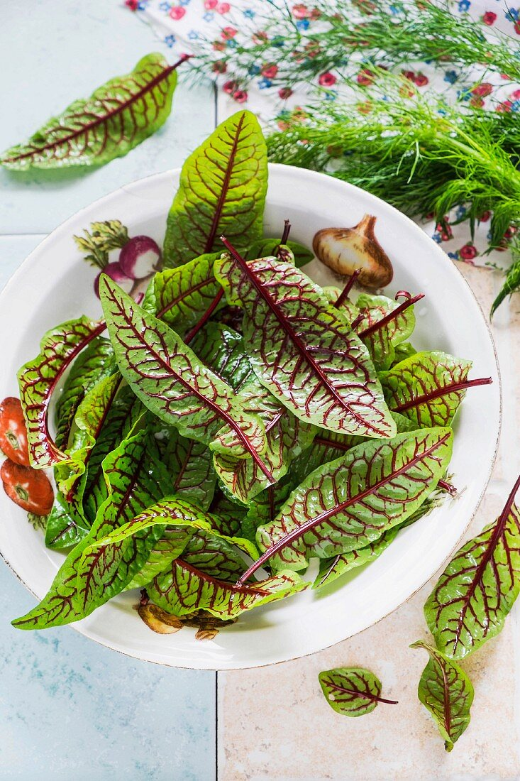 A bowl of red lettuce leaves