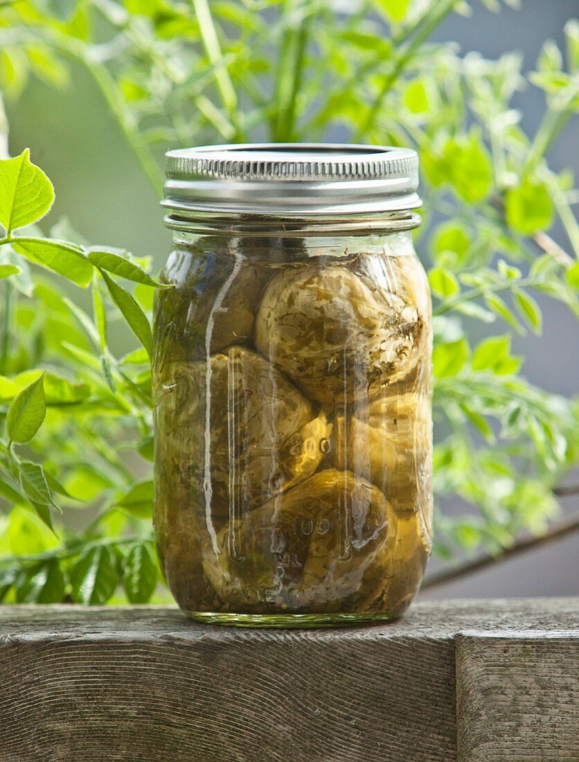 Jar of Homemade Pickled Brussels Sprouts