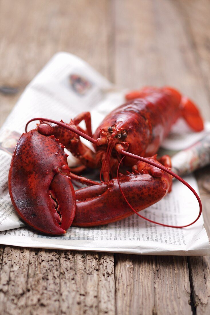 A whole cooked lobster on a piece of newspaper