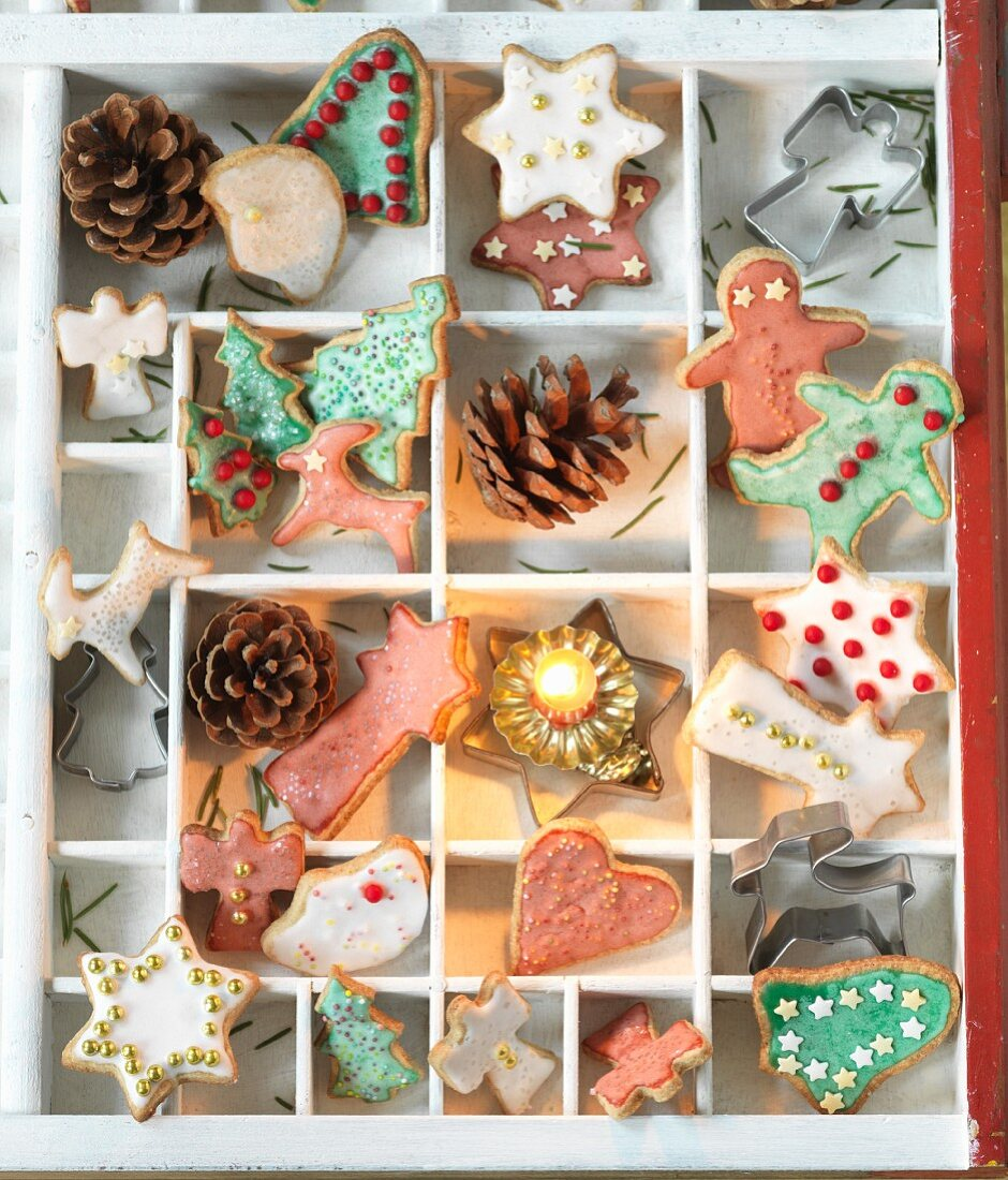 Colourfully decorated Christmas biscuits in a seedling tray