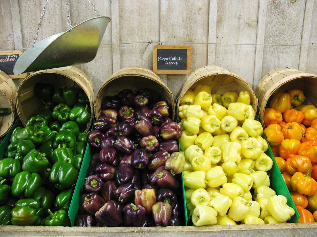 Various types of peppers at a farmers market