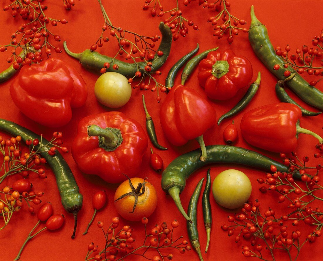 An arrangement of peppers, chilis, tomatoes and rosehips (full frame)